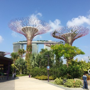 植物園からMarinaBaySands