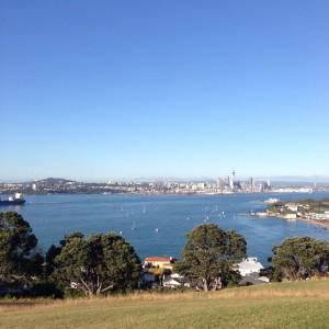 NZからの景色